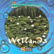 Wetlands (Water Habitats)