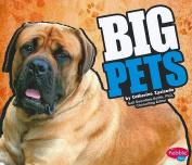 Big Pets (Pebble Plus