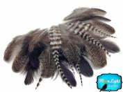 Hen Feathers, Mix Natural Brahma Hen Loose Feather - 2 Dozen