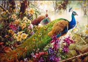 [ New Release, Wooden Framed or Not ] Diy Oil Painting by Numbers, Paint by Number Kits - Peacock 16*50cm - PBN Kit for Adults Girls Kids White Christmas Decor Decorations Gifts